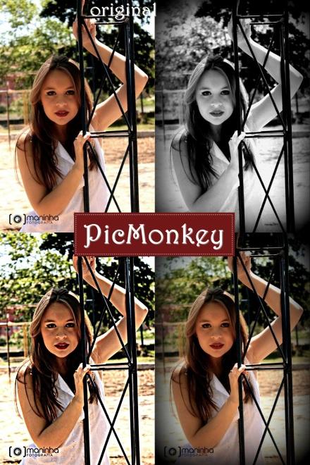 PicMonkey-final